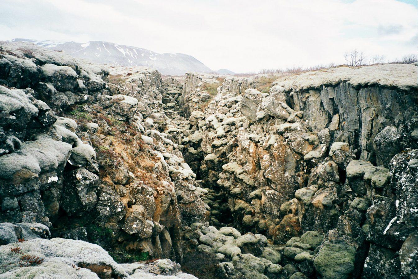 Thingvellir, Iceland photographed with Yashica T4 Zoom 35mm camera